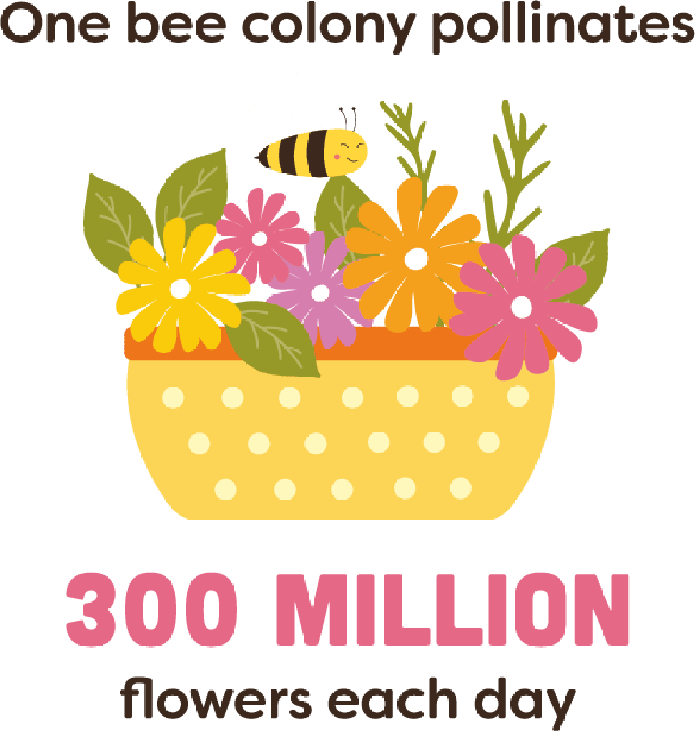 One bee colony pollinates 300 millions flowers each day