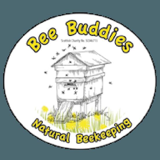 Bee buddies natural beekeeping